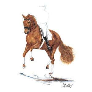 Rheingold Small Print (Show Jumper) by Jan Kunster