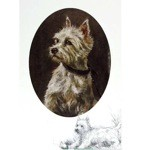 Westie Portrait Card 6 Pack (West Highland Terrier)