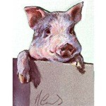 Inquistive Card 6 Pack (Pig)