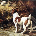 The Discoverers Card 6 Pack (Jack Russell)