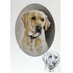 Yellow Lab Portrait Card 6 Pack (Labrador Retriever)