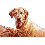 Yellow Lab Card 6 Pack (Labrador Retriever)