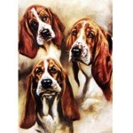 Studies of a Bassett Hound Card 6 Pack