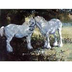 In the Shade Card 6 Pack (Draft Horse)