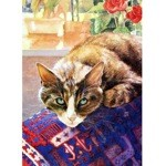 Pensive Card 6 Pack (Cat)
