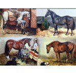 Off Duty Card 6 Pack (Horses)
