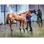 Washing Down Card 6 Pack (Horse Racing)