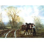 Unhitching Card 6 Pack (Draft Horse)
