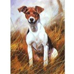 The Scrapper Card 6 Pack (Jack Russell)