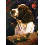 Christmas Time Card 6 Pack (English Springer)