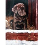 First Winter Card 6 Pack (Chocolate Labrador)