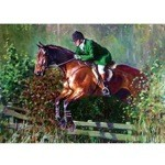Over the Fence Card 6 Pack (Jumping Horse)