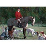Roderick Duncan Huntsman Grove Card 6 Pack (Rider and Hound)
