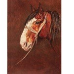 The Old Fellah Card 6 Pack (Draft Horse)