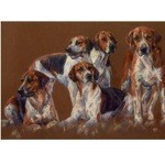 Hounds Card 6 Pack (Fox Hounds)
