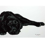 Lounging Around Card 6 Pack (Black Labrador)