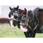 Workers Card 6 Pack (Draft Horse)