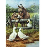 Donkey & Friends Card 6 Pack