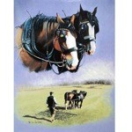 The Ploughmans Pal Card 6 Pack (Draft Horse)