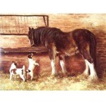 Lunchtime Card 6 Pack (Jack Russell and Draft Horse)