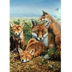 Motherly Love Card 6 Pack ( Mother Fox & Foxes)