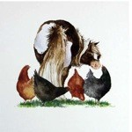 Pecking Order Card 6 Pack (Horse and Hens)