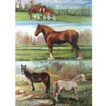 Clydesdale and Ponies Card 6 Pack