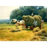 Haymaking Card 6 Pack (Draft Horse)