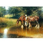 Noon Time Watering Card 6 Pack (Draft Horses at Water Hole)