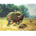 July Afternoon Card 6 Pack ( Draft Horse with Haycart)