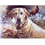 Yellow Lab in Action Card 6 Pack (Labrador Retriever)