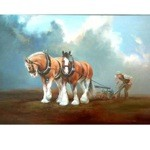Fortitude Card 6 Pack (Clydesdale)