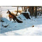 Christmas Morning Card 6 Pack (Fox)