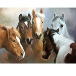 Five Friends Card 6 Pack (Horses)
