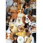 Toy Dogs Card 6 Pack