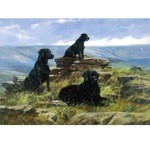 Three is a Crowd Card 6 Pack (Labrador Retrievers)
