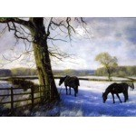 Winter Wonderland Card 6 Pack (Horses)
