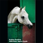 Arabian Horse greetingss Puzzle