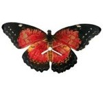 Lacewing Butterfly Clock