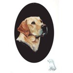 Yellow Labrador Portrait Print (Labrador Retriever)