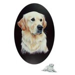 Golden Retriever Portriat Print