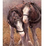 Horse Whisperer Print (Draft Horses) by Malcom Coward