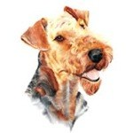 Airedale Head Clock