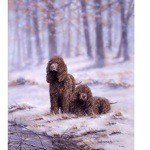 Snow Bound Print (Irish Water Spaniel)
