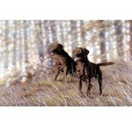 Double Chocolate Print (Labrador Retriever)