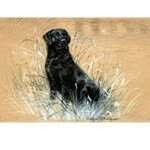 At Work Print (Labrador Retriever)