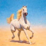 Sand Dancer Large Print (Arabian Horse) by Fred Haycock