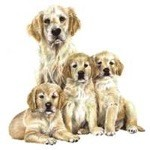 Golden Retriever Family Clock