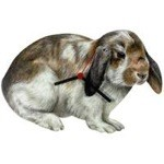 Lop Ear Rabbit Clock