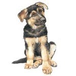 German Shepherd Puppy Clock